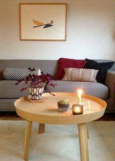 wohnzimmer yucca   pflanzen und blumen   pinterest - Wohnzimmereinrichtung Warm
