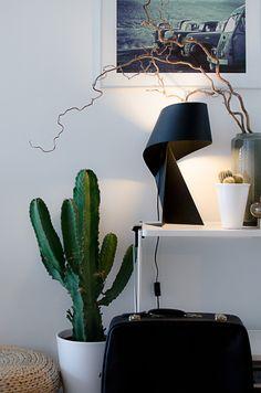 Cactus Love! Stilleben med kaktus. #noesdesign
