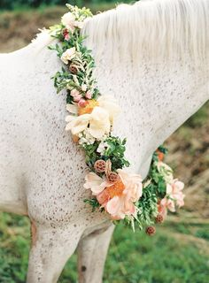 White horse with a wreath of flowers