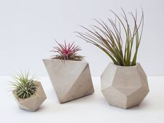 Concrete Geometric Set Of Three Planters