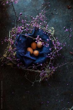 Easter Table Decoration DIY Idea Eggs in a Twiggy Nest by Nadine Greeff - Stocksy United Easter Table Decorations, Party Kit, Spring Blossom, Pretty Pictures, Royalty Free Photos, Happy Easter, Food Styling, Food Art, Food Photography