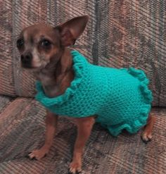 stunning-free-crochet-dog-sweater-patterns-for-small-dogs-crochet-sweater-patterns-crocheted-dog-sweaters-crocheted-clothes-for-dogs-fgaserq- See other ideas and pictures from the category menu…. Crochet Dog Sweater Free Pattern, Crochet Dog Patterns, Crochet Motifs, Crochet Jacket, Sweater Patterns, Free Crochet, Dog Crochet, Easy Beginner Crochet Patterns, Crochet Sweaters