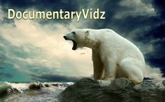 Animals Wild in Alaska - Full Wildlife Documentary @DocumentaryVidz