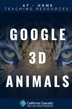 We just went live with another Free At-Home Teaching Resource on our blog! Check it out to see how to use Google's 3D animal feature and bring the zoo to your livingroom 🐅🦁