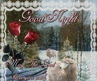 Goodnight Have A Peaceful Sleep