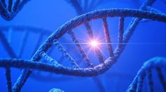 Descubren una mutación genética clave en el autismo - http://www.notiexpresscolor.com/2016/11/15/descubren-una-mutacion-genetica-clave-en-el-autismo/