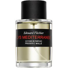 100 ML SPRAY - 100 ml Sprays - Perfumes