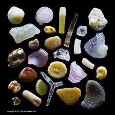 Microscopic Photos Reveal The Secret World Hidden Inside A Few Grains Of Sand