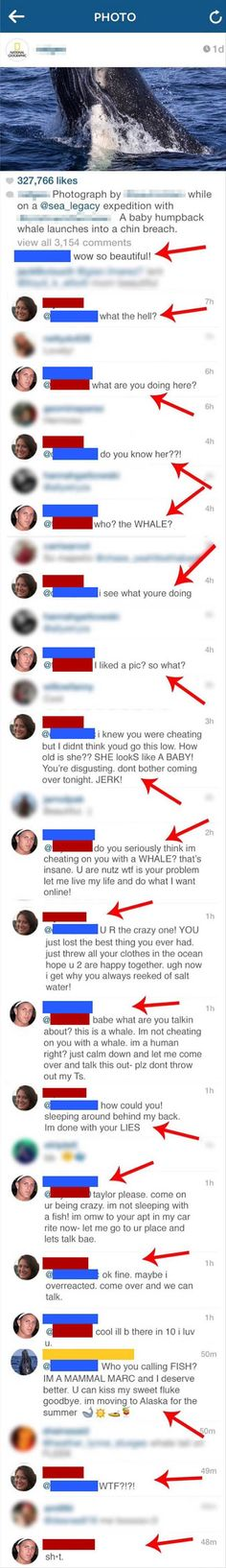 The whale is trying to do you a favour!  Get away from this woman right now!  No-one needs this level of stupidity and drama in their lives .....