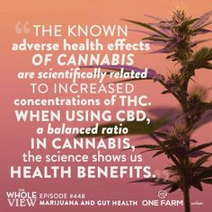 This week on The Whole View, we discuss the proposed mechanisms of CHS, and the risks of developing it for both recreational marijuana users and medical marijuana users. We also compare and contrast THC and CBD's impact on gut health, and share lots of good news for people who supplement with high quality CBD! #CBD #marijuana #guthealth #CHS