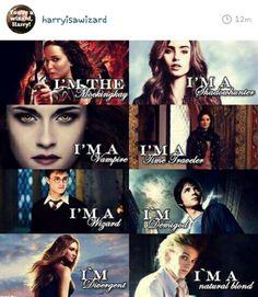 Hunger Games, Mortal Instruments, Twilight Saga, Harry Potter, Percy Jackson, Divergent.