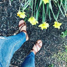 Spring is my favorite time of year  Sandals and flowers and the smell of rain. It's pretty much perfection. But there's also a sense of freedom and fresh starts and adventures waiting to be had. What will you do with your summer. I plan to see travel and focus more on my health and wellness. #wellness #earth #onelove #eatclean #travel #meditate #meditation #mentalhealth #getfit #justdoit #yogi #traveling #gypsy #gypsysoul #wander #wanderlust #explore #adventure #retreat #boho #ocean #beach…