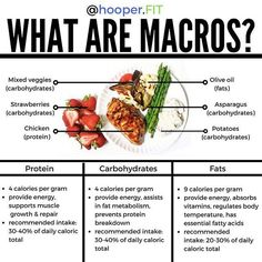 """💥WHAT ARE MACROS?💥 . 🖐🏼First up! A big high-five to my source @macroplate . 🤷🏼♀️ If you've been hanging around my page for a while then you've seen me talk a lot about the importance of being in a calorie deficit to lose fat. . 💪🏼 But today, we're going to discuss what it takes to take your body to the next level using macronutrients. . 🤡 To keep it succinct, when you hear someone talk about having a """"balanced meal,"""" they're essentially referring to the importance of having a wide…"""