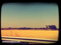 Through wonderful fields