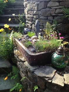 Stone sinks are difficult to find, and they are expensive to buy when you track one down, but the old porcelain models are more readily available at not such Succulents In Containers, Container Plants, Container Gardening, Alpine Garden, Alpine Plants, Garden Sink, Garden Planters, Small Front Gardens, Perennial Grasses