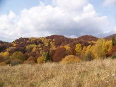 Bieszczady south-east POLAND