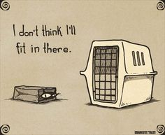"""Cat Carrier - """"I Don't Think I'll Fit In There."""" (Brainless Tales Cat)"""