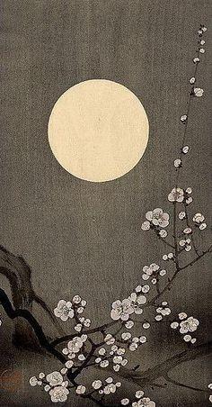 Ohara Koson I love Asian art Japanese Painting, Chinese Painting, Chinese Art, Japanese Prints, Japanese Design, Art Chinois, Ohara Koson, Art Asiatique, Art Japonais