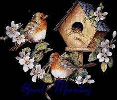 Good Morning Graphics, Facebook Pictures, Images - page 3