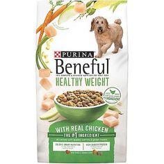 Dog Dry Food Purina