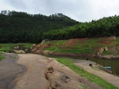 Tourist Attraction India: Natural Munnar View | green Munnar | Tourism Munnar | destination Munnar  | Tourism, tour and travel