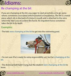 Idioms:  Champing at the bit