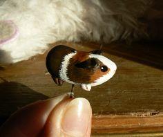 Custom guinea pig - by Wildyfraise #guineapig #cute #piggy #cochondinde #cobaye