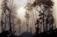 spray paint and illustrations by Brooks Salzwedel
