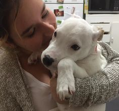 He looks a little unsure, but that will change after a few days of love and attention. His human named him Casper!