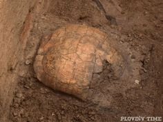 Puzzling Burial with Tortoise Shell Discovered in Ancient Roman Tomb on Medical University Campus in Bulgaria's Plovdiv - Archaeology in Bulgaria #AncientRome #RomanEmpire #Bulgaria