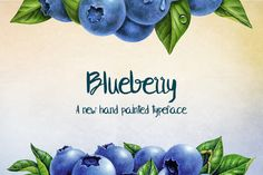Blueberry Typeface by Holytramp on Creative Market