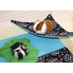 Corner Hammock for guinea pig. Will make this for Nutmeg!