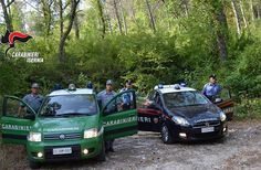 Incendi boschivi. Indagini dei Carabinieri: si stringe il cerchio intorno ai piromani a cura di Redazione - http://www.vivicasagiove.it/notizie/incendi-boschivi-indagini-dei-carabinieri-si-stringe-cerchio-intorno-ai-piromani/