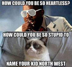 Funny pictures about Heartless grumpy cat. Oh, and cool pics about Heartless grumpy cat. Also, Heartless grumpy cat. Grumpy Cat Quotes, Funny Grumpy Cat Memes, Cat Jokes, Funny Animal Jokes, Funny Cats, Funny Animals, Funny Memes, Funny Quotes, Grumpy Kitty