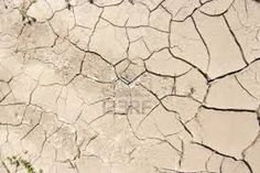 parched/earth - Google Search