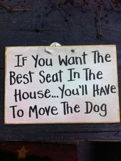 So true!!  Be sure to have the pet hair remover in hand!