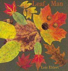 Leaf Man by Lois Ehlert.  Read this for storytime (3-5yrs) and then have them make their own pictures out of fall leaves!
