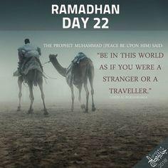Quran Quotes Inspirational, Islamic Love Quotes, Muslim Quotes, Religious Quotes, Ramadan Tips, Ramadan Day, Ramadan Mubarak, Ramadhan Quotes, Ramadan Kareem Pictures