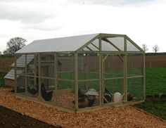 Poultry Protection Pens are secure, strong weldmesh, walk-in chicken runs to protect your chickens from predators as well as from contamination by garden birds. Chicken Coops Uk, Chicken Pen, Portable Chicken Coop, Chicken Eggs, Chicken Houses, Walk In Chicken Run, Goose House, Duck Coop, Fancy Chickens