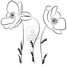 Image result for drawn poppy flowers