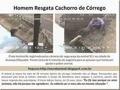 Mural Animal: Homem Resgata Cachorro de Córrego no Equador