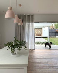 We're in love with this stunning 9 month renovation completed by Bloom Projects, featuring a row of Nordlux Circus pendant lights in a rose finish ✨ Lounge Curtains, Voile Curtains, Curtains With Blinds, Sliding Door Window Treatments, Window Coverings, Curtains For Bifold Doors, Ceiling Pendant, Pendant Lights, Stacker Doors