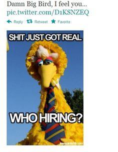 18 Big Bird Mitt Romney Memes inspired by US Presidential debates