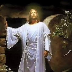 ★ Soulful White ★, , ശുഭദിനം കൂട്ടുകാരെ.... Good morning ..... . — https://www.facebook.com/jaison.sn/posts/1617530451816854