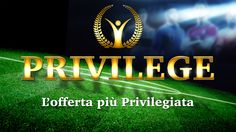 Privilege: Graphic Designer - Logo Designer