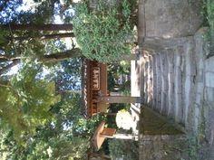 4/27 AM8:49 場所は変わって鎌倉、浄智寺。
