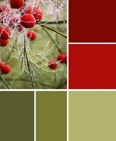 olive greens and brick reds. Olive green kitchen walls with brick red accent wall and pieces