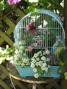 Flowers in a birdcage.