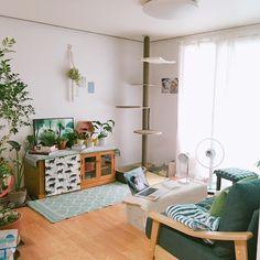 living room / home / decor / small room / cat