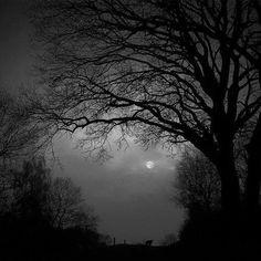 Shaded moon light